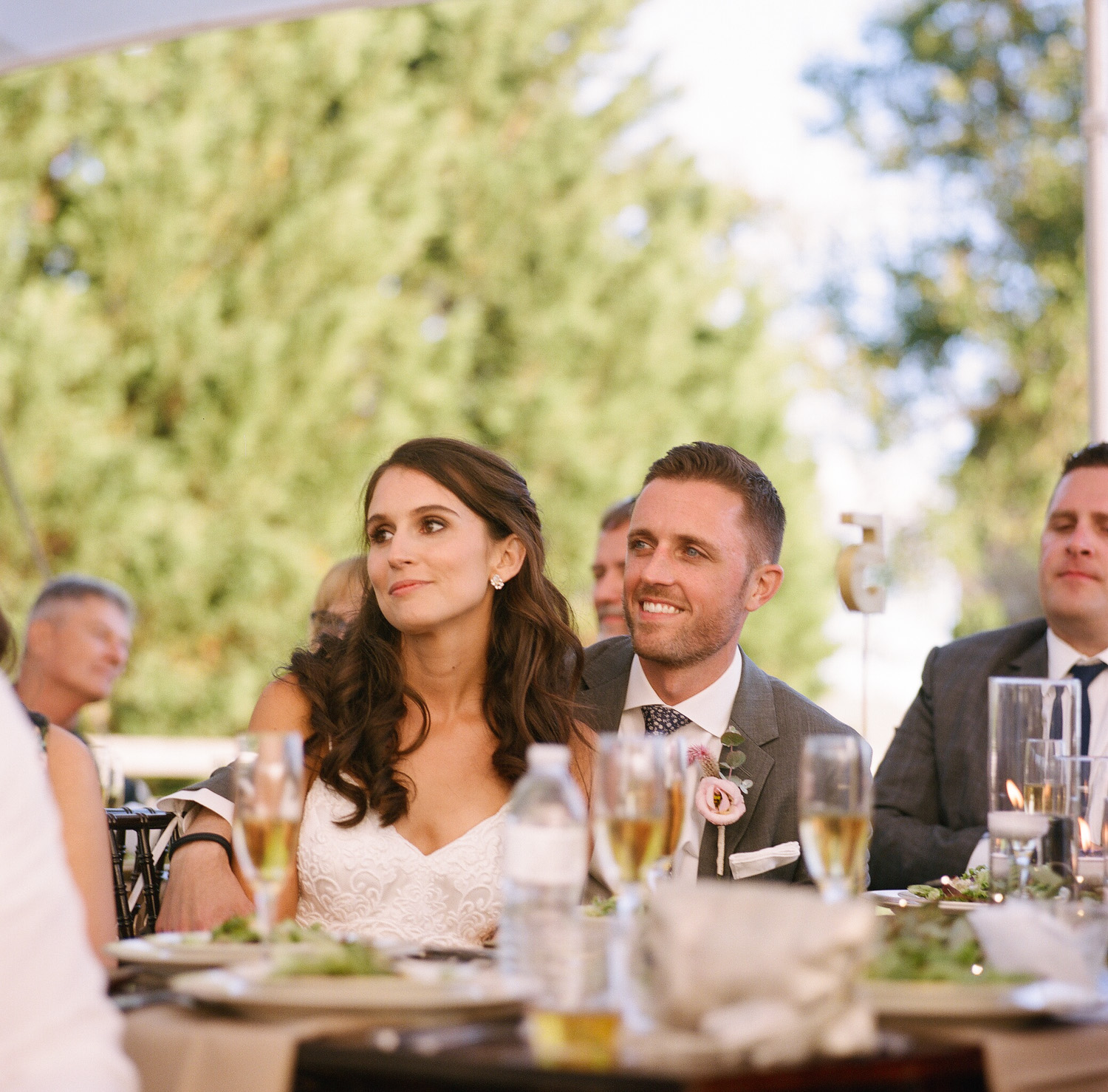 image of bride and groom during wedding reception toasts